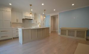 Revolutionizing Burleith Interiors, Kitchens, Fixtures